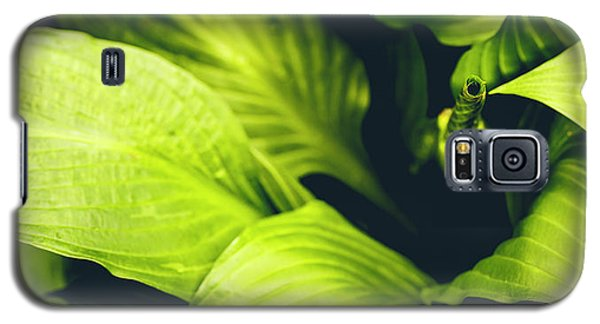 Leafy Greens Galaxy S5 Case
