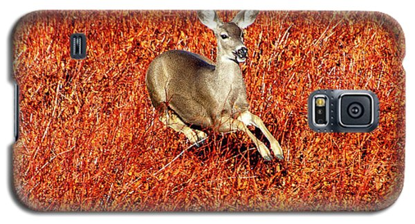 Leaping Deer Galaxy S5 Case