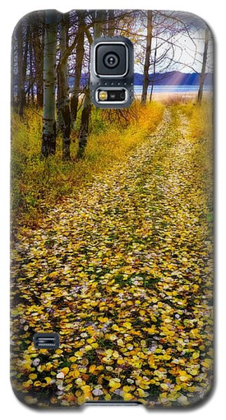 Leaves On Trail Galaxy S5 Case