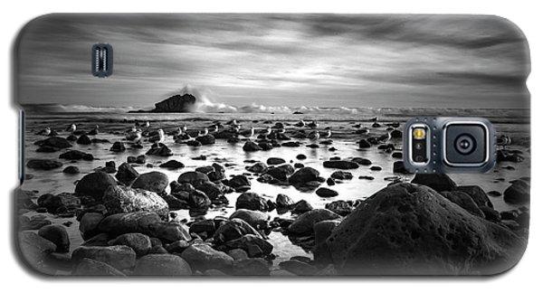 Leo Carrillo Light Galaxy S5 Case