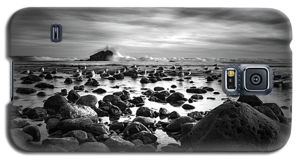 Leo Carrillo Light Galaxy S5 Case