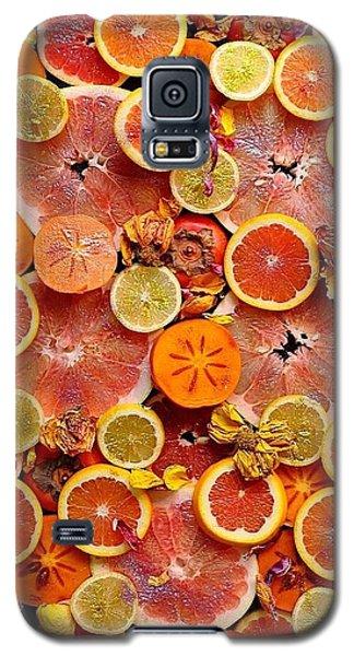 Let The Winter Sun Shine In Galaxy S5 Case