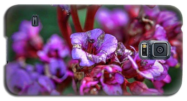 Lilac #h9 Galaxy S5 Case