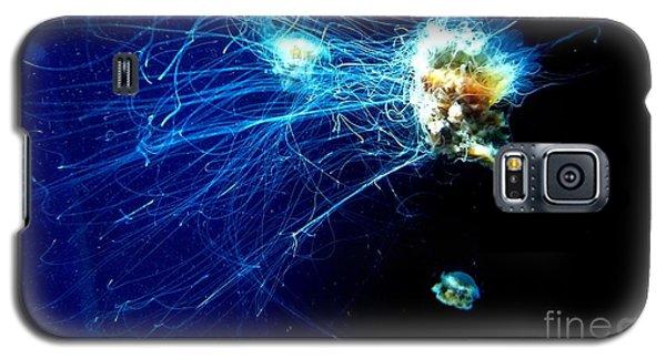 Lion-head Jellyfish  Galaxy S5 Case