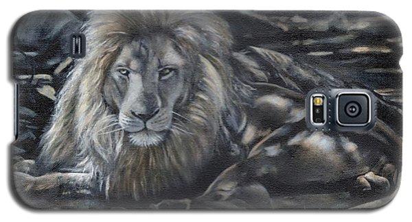 Lion In Dappled Shade Galaxy S5 Case