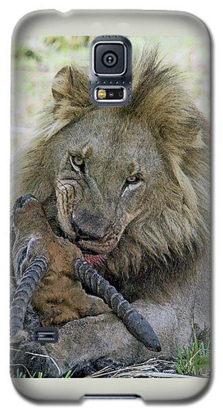 Lion Prey Galaxy S5 Case