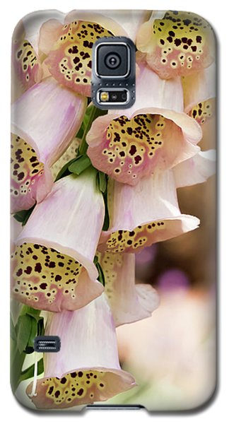 Little Bells Galaxy S5 Case