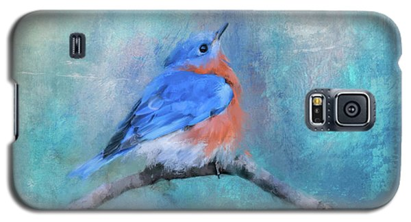 Little Boy Blue Galaxy S5 Case