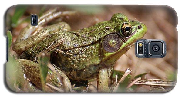 Little Green Frog Galaxy S5 Case