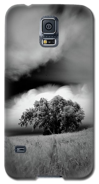 Lone Tree On A Hill Galaxy S5 Case