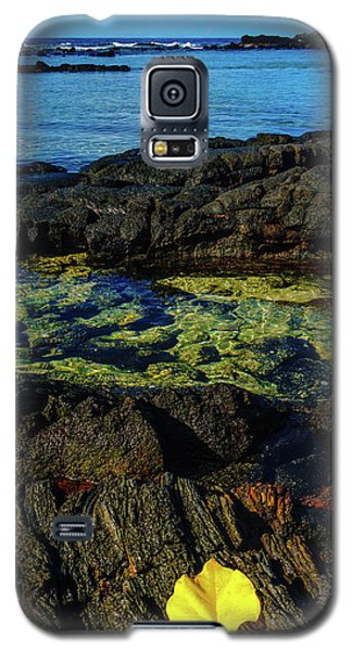 Lonely Leaf Galaxy S5 Case