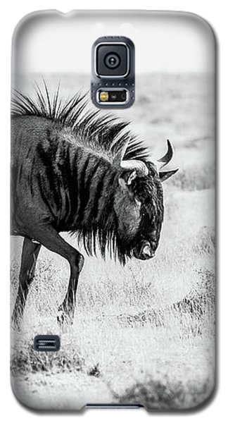 Long Walk Galaxy S5 Case