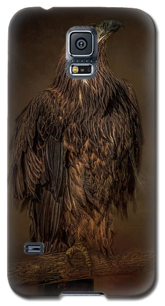 Look Up Galaxy S5 Case