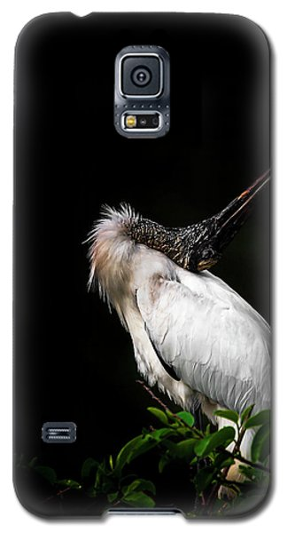 Looking For Love Galaxy S5 Case