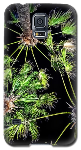Looking Up Galaxy S5 Case