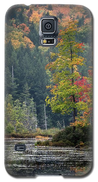 Loon Lake Galaxy S5 Case