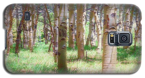 Lost In The Woods - Kenosha Pass, Colorado Galaxy S5 Case