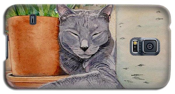 Louie In An Urban Jungle Galaxy S5 Case