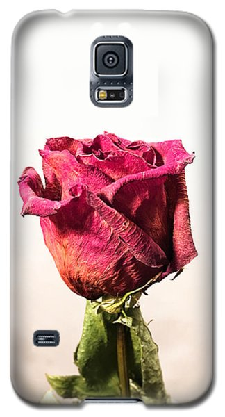 Love After Death Galaxy S5 Case