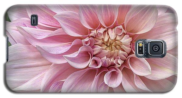 Lovely Dahlia Galaxy S5 Case