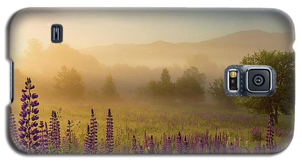 Lupine In The Fog, Sugar Hill, Nh Galaxy S5 Case