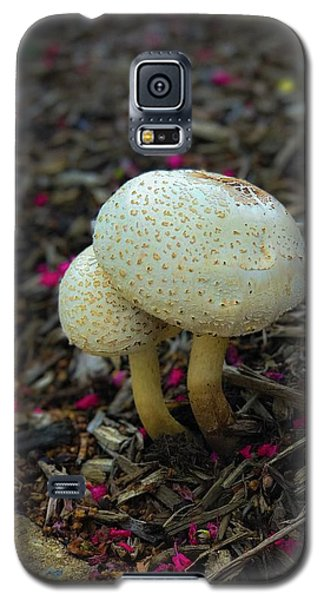 Magical Mushrooms Galaxy S5 Case