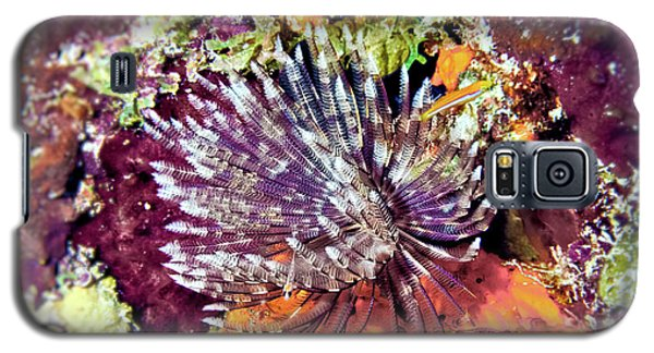 Magnificent Feather Duster Galaxy S5 Case