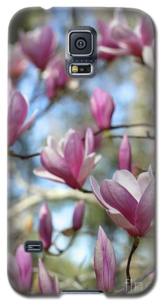 Saucer Magnolia Galaxy S5 Case - Magnolia Perspective Soft Colors by Carol Groenen