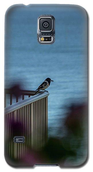 Magpie Bird Galaxy S5 Case