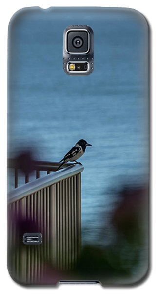 Magpie Bird Galaxy S5 Case