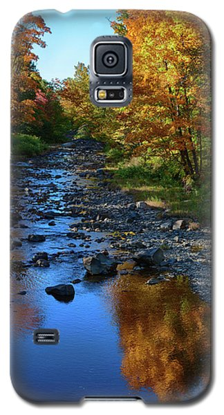 Maine Fall Color Reflection Galaxy S5 Case