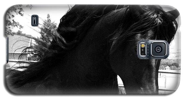 Majestic Beauty  Galaxy S5 Case