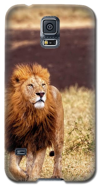 Majesty Galaxy S5 Case