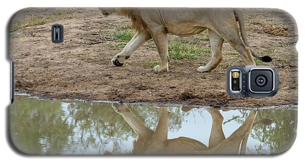 Male Lion And His Reflection Galaxy S5 Case