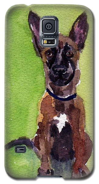 Malinois Pup 2 Galaxy S5 Case