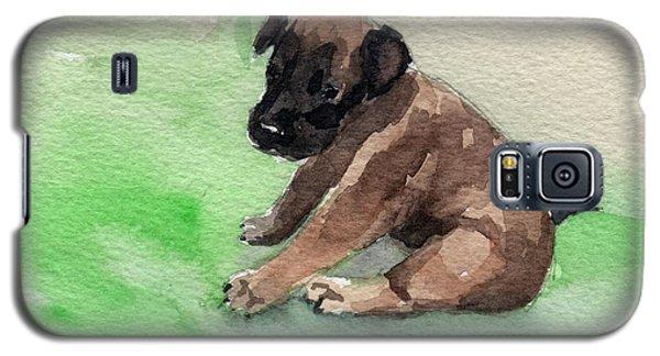 Malinois Pup 3 Galaxy S5 Case
