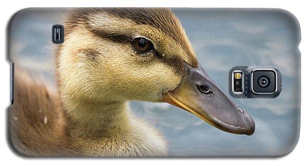 Mallard Duckling Galaxy S5 Case