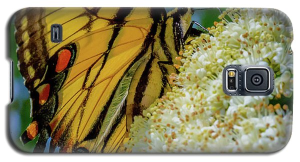 Manassas Butterfly Galaxy S5 Case