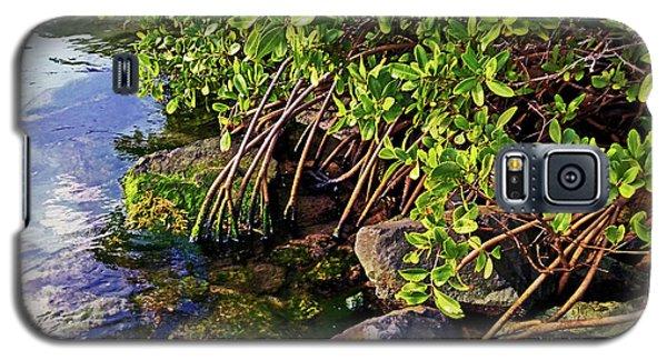 Mangrove Bath Galaxy S5 Case