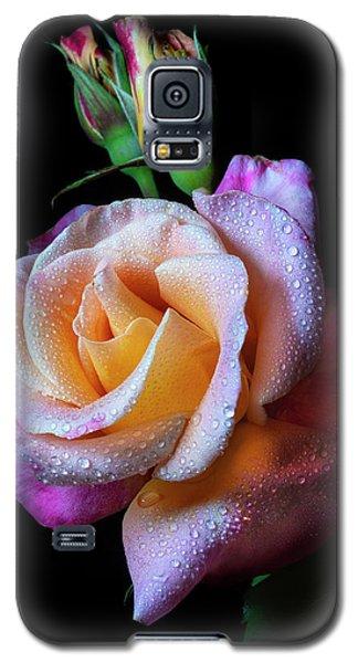 Mardi Gras Rose Portrait Galaxy S5 Case