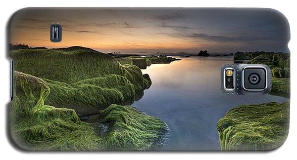 Marine Sunset Galaxy S5 Case