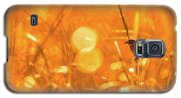 Marsh Sparrow Galaxy S5 Case