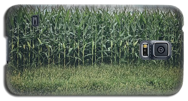 Maze Field Galaxy S5 Case