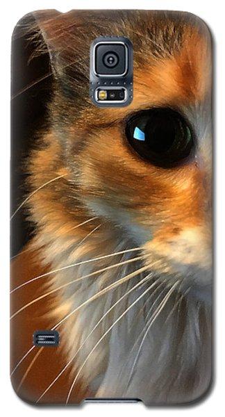 Mercy Galaxy S5 Case