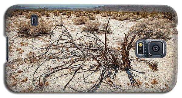 Mesquite In The Desert Sun Galaxy S5 Case