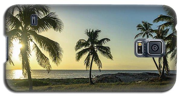Mexico Palm Tree Sunrise Galaxy S5 Case