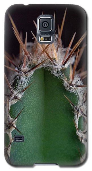 Mini Cactus Up Close Galaxy S5 Case