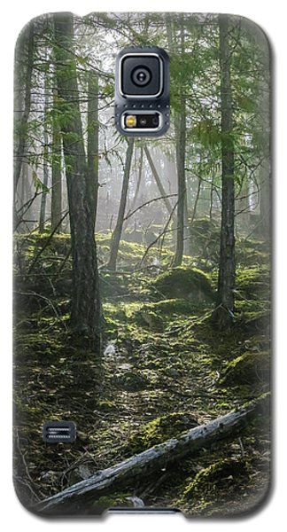 Misty Forest Morning Galaxy S5 Case