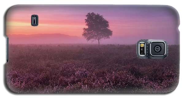 Misty Morning Galaxy S5 Case