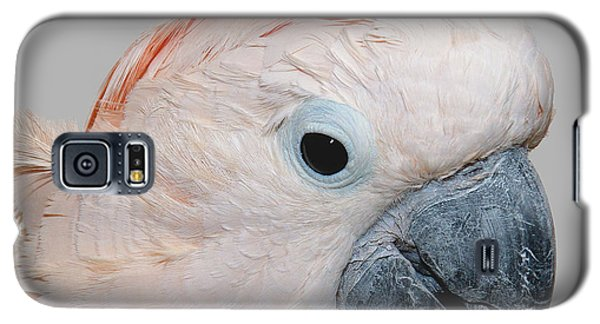 Moluccan Cockatoo Galaxy S5 Case